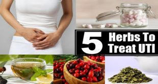 How to Treat Liver Heat and Urinary Infections with Herbs