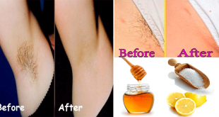 Easy to Remove Pubic Hair Permanently With Home Remedies