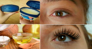 natural Remedies to Grow Eyelashes Fast that Work 100%