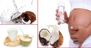 Amazing Benefits of Coconut Water for Skin & Health