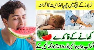 Benefits of watermelon seeds