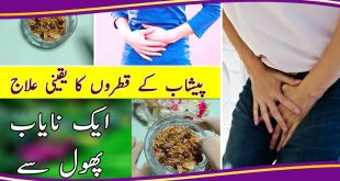 Natural treatment to solve urine problems